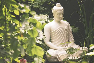 Giardino Botanico - Fondazione Heller